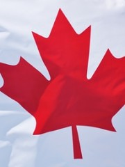 NEW!  THE DTI CANADIAN PACKAGE